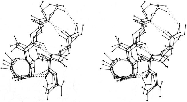 Fig 33b